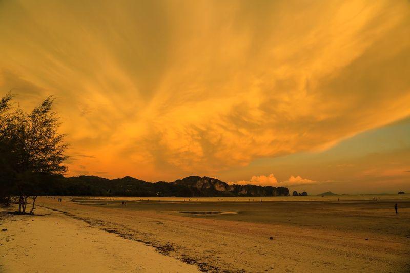 43 Golden Moments Golden beach.