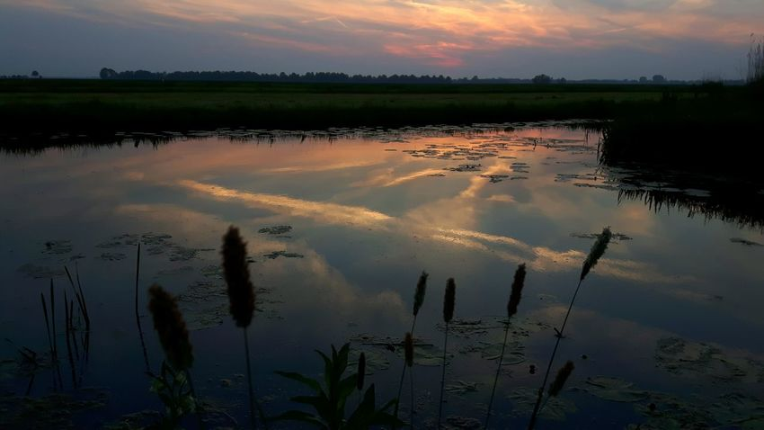 Water Sunset Agriculture Lake Dawn Rural Scene Reflection Sky Landscape Cloud - Sky