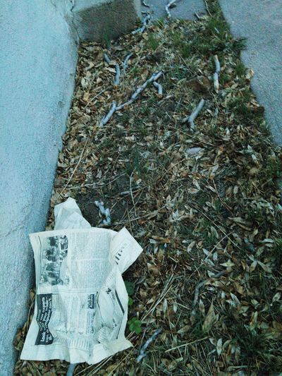 Close-up No People Textured  Day Outdoors Newspaper Pages Words News Newspaper Art On The Streets On The Ground Collection