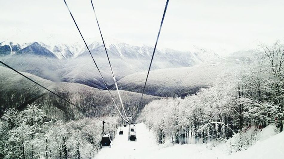 Sochi, Krasnaya Polyana Mountain Snow Winter Nature Landscape Outdoors Cold Temperature Ski Lift Fog Beauty In Nature