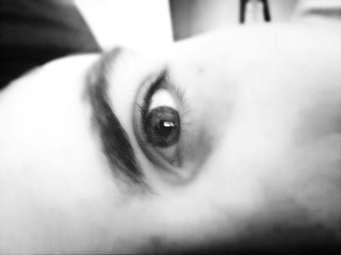 眼 眼睛 男朋友