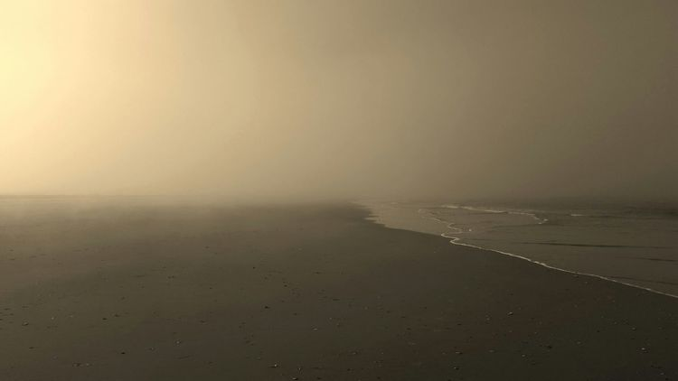 Lifting fog Sepia Life Is A Beach Monochrome Jersey Shore New Jersey EyeEm New Jersey Ocean City Nj  Sand Between My Toes My Beach