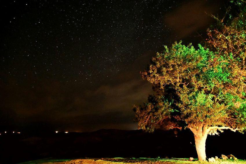 Shutterspeed 15. Iso1100 F3/6 Shiraz🍷 Shiraz, Iran Art Of Shiraz Nightphotography Night Photography First Eyeem Photo