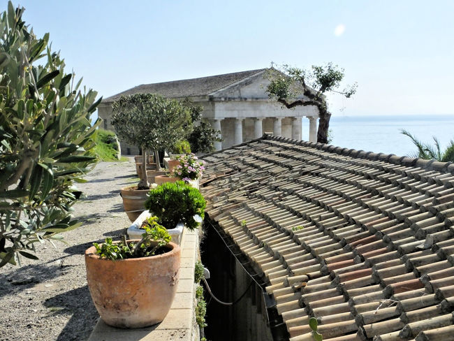 Architecture Building Exterior Built Structure Church High Angle View Historical Building Outdoors Potted Plant Roof Temple