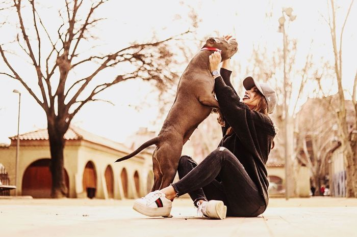 Bestseller  Dog Urbanfashion Urban AmericanBlue Mid Adult Adult Adults Only Strength Only Men Outdoors One Man Only Day Young Adult Sky People One Person Full Length Lifestyles Real People City