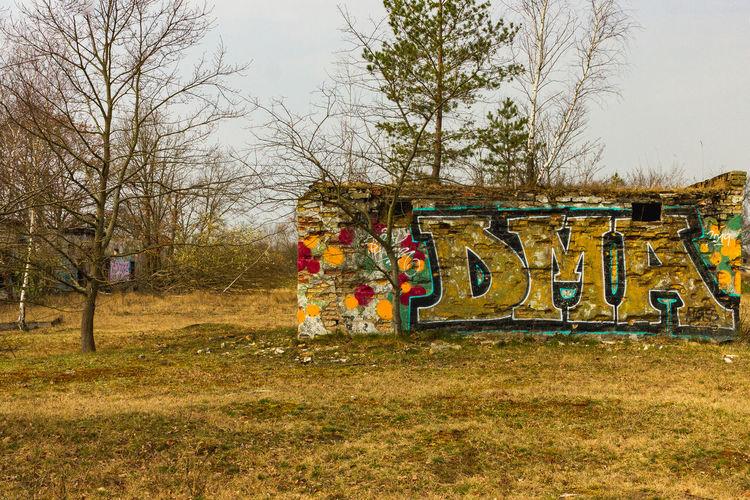 Graffiti on field against trees in park