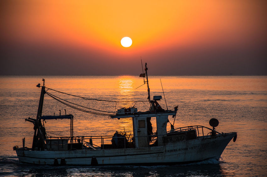 Fishing. Fishing Fishing Boat Fishing Industry Horizon Over Water Italy Nature Sea Silhouette Sunrise Transportation Summer Road Tripping