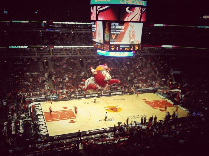 Benny The Bulls in Action