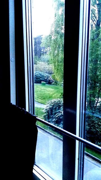 Hommage To Grace Jones Faces Of EyeEm Windowporn Contrastporn Grace Jones W.Y.S.I.W.Y.G.