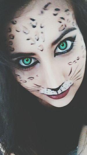 Make-up Enjoying Life Cat Beautiful