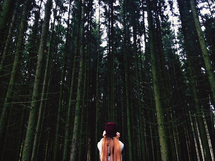 Woman standing by trees in forest