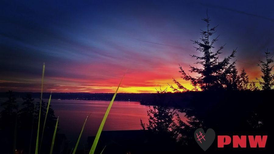 Another sunrise from the deck.... PNW Upperleft Itsanicelife Iwokeuplikethis