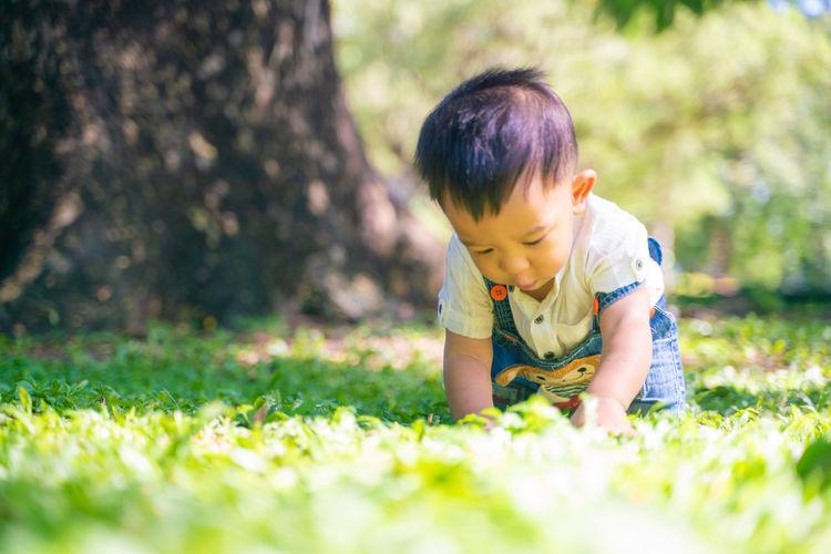 Cute boy against trees