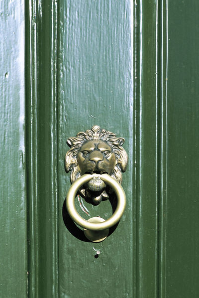 Brass door knocker in the shape of a Lions head on a green door Analogue Photography Animal Face Brass Close-up Closed Detail Door Door Knocker Entrance Face Film Photography Green Green Color Knocker Lion Lions Head Metal Metallic Real Film