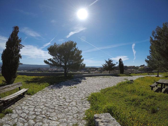 Footpath amidst trees against sky on sunny day