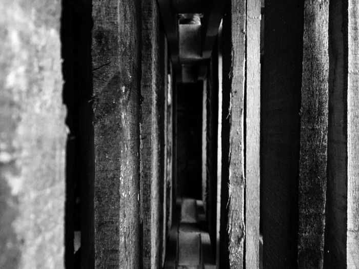 Wooden Pallet taken as if looking down a Corridor Playing With Perspective Different Perspective Different View Check This Out Taking Photos Junk Abandoned