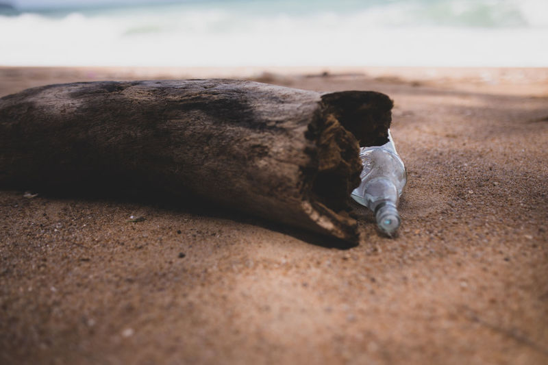 Close-up of wood and bottle at beach