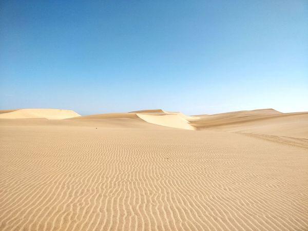 Desert dunes Namibia Landscape Namibia Desert Africa Dunes Swakopmund Namib Desert Namibia EyeEm Selects Sand Dune Clear Sky Desert Arid Climate Mountain Sand Blue Accidents And Disasters Environment Sunny Nature Reserve