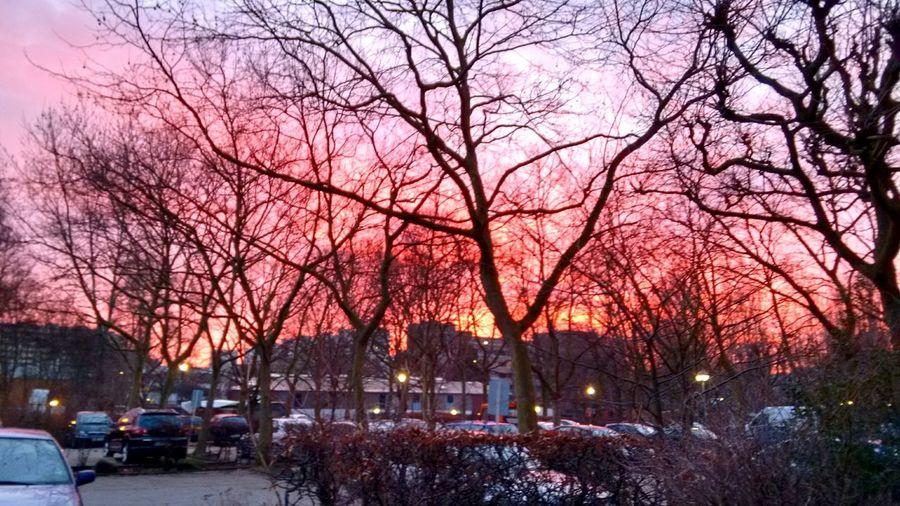 Sunrise Nofilter