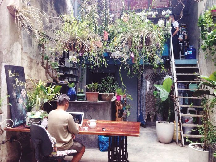 Secret garden 😍 Natural Beauty Green Plant Green Place Afternoon Coffee Flowers Freezing