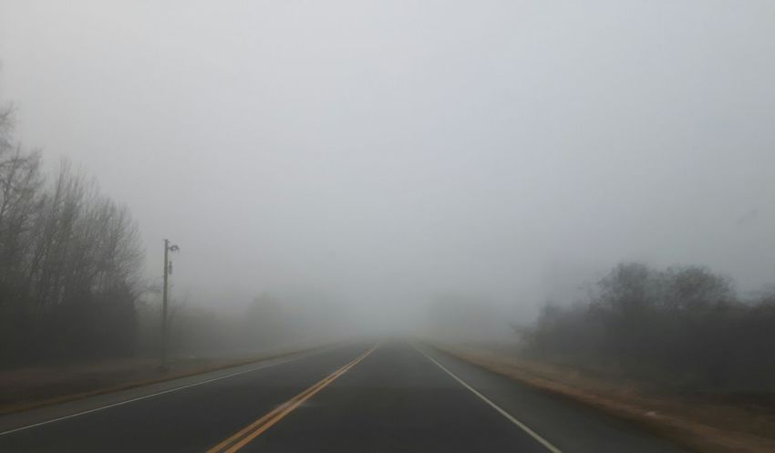 Fog No People Nature Tree Road Outdoors Day Fields Non-urban Scene Samsung Galaxy S5 Neo Sky Spruce Grove, Alberta Landscape Road Nature Weather Beauty In Nature Scenics