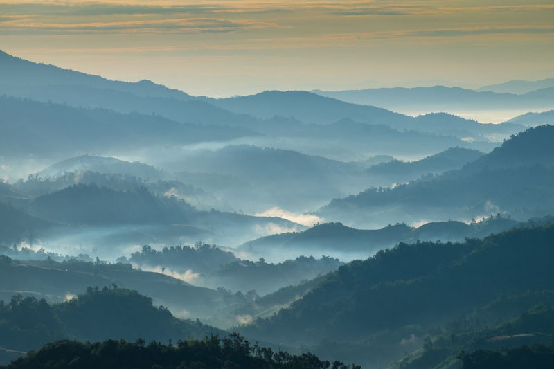 Beautiful Landscape of mountain layer in morning sun ray and winter fog at Chiangrai, Thailand Beauty In Nature Chiangrai Day Fog Foggy Morning Forest Hazy  Idyllic Landscape Mist Mountain Mountain Range Nature No People Non-urban Scene Outdoors Scenics Sky Sunset Tranquil Scene Tranquility Tree