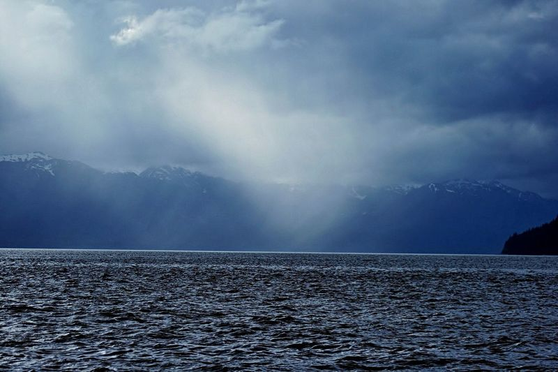 Beautiful Juneau humpback whale turf Sea No People Beauty In Nature Freshness Beauty Scenics Landscape Tranquility Nature Outdoors Water Day Spirituality Love♥ Snow Peaks Dusk Colours Whispy Clouds Juneau AK
