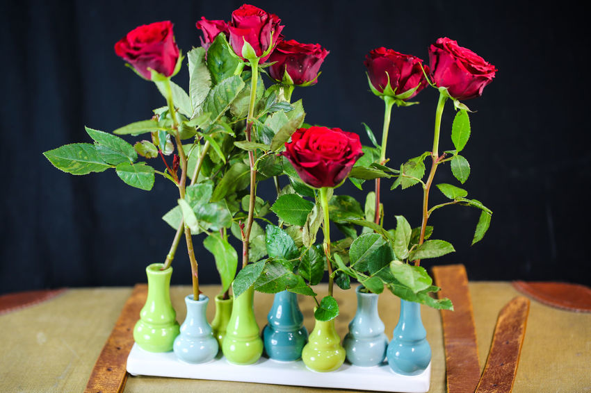 Roses Are Red Vase Of Flowers Flower Flowering Plant Plant Vase Table Beauty In Nature Freshness Plant Part Leaf Nature Close-up Red No People Green Color Petal Indoors  Flower Head Fragility Still Life Vulnerability  Flower Arrangement