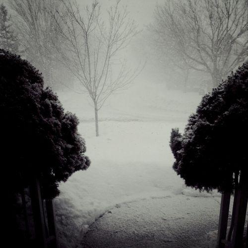 Winter day in Quebec !!