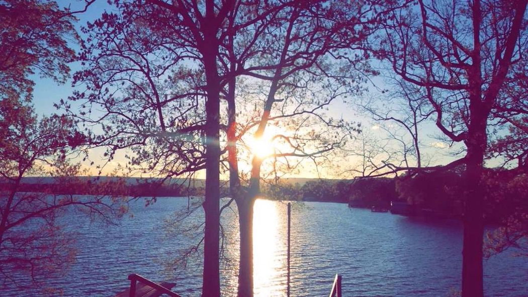 Water Sunset Tree Lake Sun Branch Tranquil Scene Scenics Sunlight Tranquility Beauty In Nature Nature Lakeshore Sky Blue Growth Sunbeam Lens Flare In Front Of No People