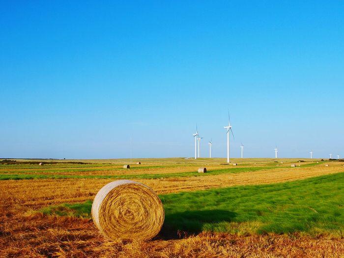 Countrylife Farming Windfarm Hay Farm Hay Round Bales Windmills Oklahoma Wind Energy