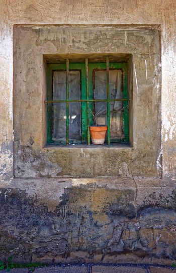 A forgotten flower pot in a window Flower Pot Green Square Architectural Detail Peeling Paint Stone Wall Window Wooden Window