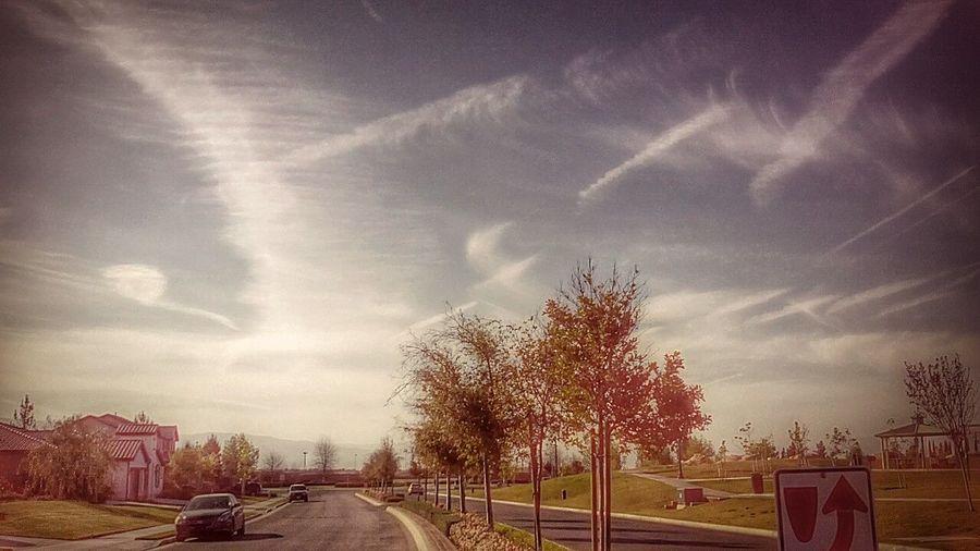 A leisurely stroll is a gift. -Paul Giamatti as Ralph Neighborhood Stroll