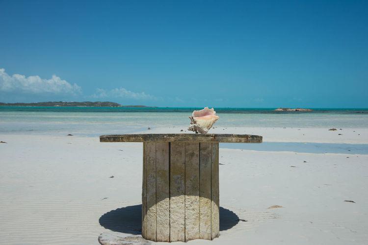 conch shell on a table Turks And Caicos Turks And Caicos Islands Turksandcaicos Conch Shell Table Conch EyeEm Selects Water Sea Clear Sky Beach Sand Blue Relaxation Sky Horizon Over Water Coastline Calm Sandy Beach Shore Ocean Seascape