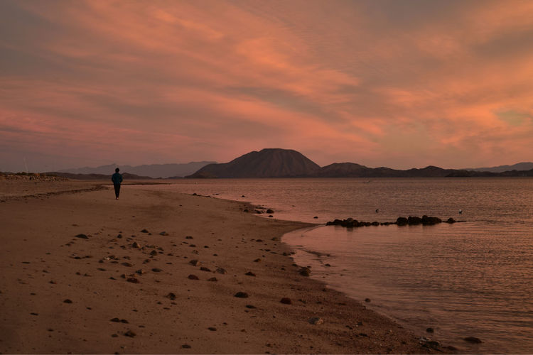 solitude of a walk along a beach at dawn in Baja, Mexico Beach Sunrise Dawn Beach Solitary Woman Alone At The Beach Beauty In Nature Day Landscape Leisure Activity Men Nature One Man Only One Person Outdoors People Real People Sand Scenics Sky Solitude By The Water Woman Alone