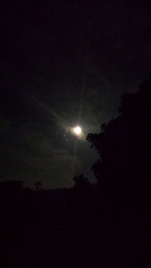 Full Moon Night awesome