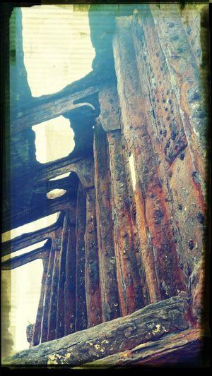 Shipwreck on the oregon coast