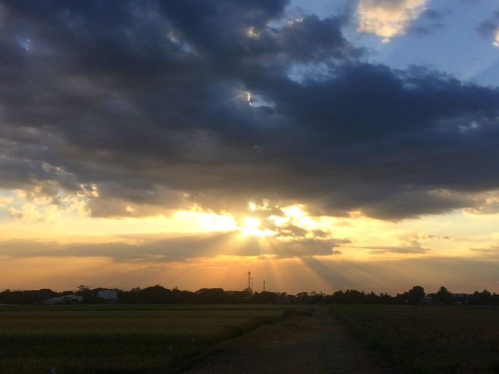 Sun and rays. IPhone Photography IPhoneography EyeEmNewHere Sky Cloud - Sky Landscape Environment Scenics - Nature Sunset Agriculture Beauty In Nature Sunbeam Tranquility