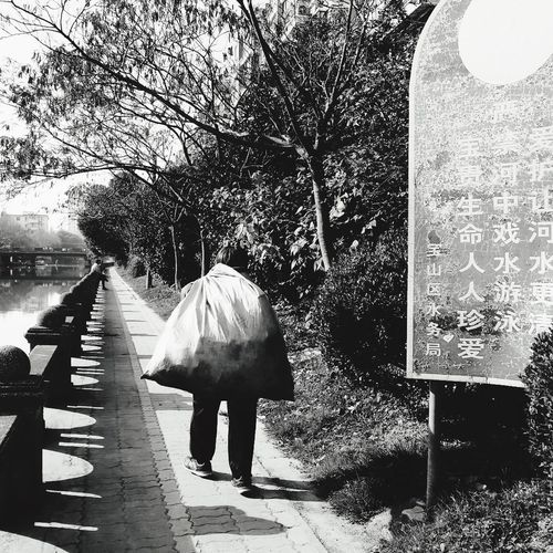 An Old Woman China In My Eyes Tree Rear View Real People Outdoors Day One Person Leisure Activity