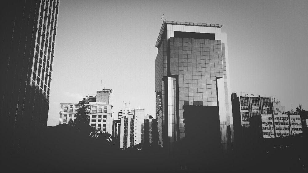 Concrete Jungle São Paulo