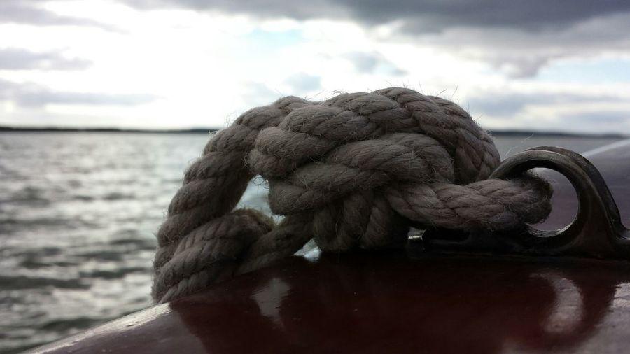 Ein wenig Halt ..... Steinhude-am-meer.de - Dein Meer-Foto Nature Boats Macro Beauty Creative Power
