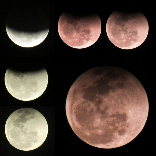 Eclipse total 27/07/2018 Totaleclipseofthemoon Bloodmoon BloodMoonEclipse EyeEmNewHere EyeEm Nature Lover EyeEm Selects EyeEm Best Shots - Landscape EyeEm Gallery Totaleclipseofthemoon BloodMoonEclipse Bloodmoon Fullmoon Canonphotography Canon Superzoom Eclipsetotal Luadesangue Sky