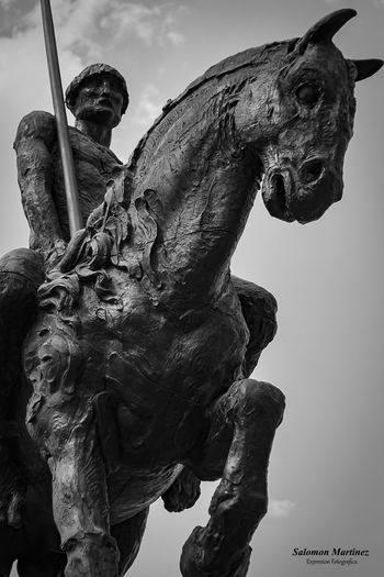 Horse and Men