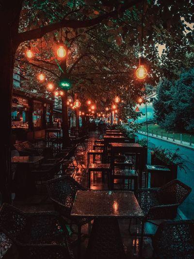 Illuminated restaurant by trees at night