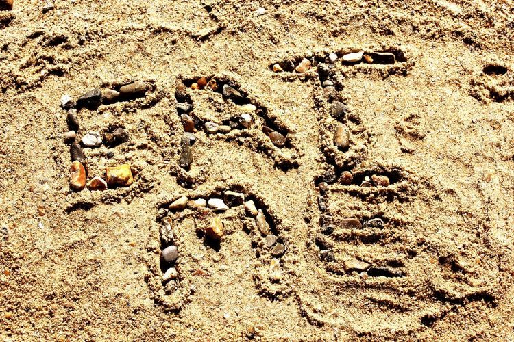 Sand Full Frame Backgrounds Pattern Day High Angle View No People FootPrint Outdoors Textured  Nature Close-up Sunlight Beach Eat Me