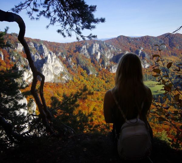Rear view of woman standing on landscape during autumn