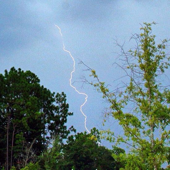 Lightning bolt from an approaching thunderstorm. WeatherPro: Your Perfect Weather Shot Thunderstorms Lightning Trees