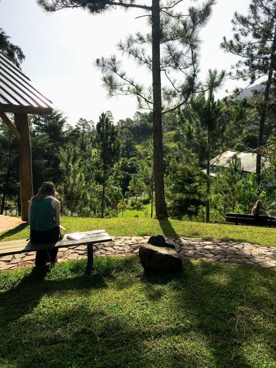 Jungle prayer time 2 Plant Tree Real People Nature One Person Sunlight Day Shadow Growth Sky Park Rear View Lifestyles Leisure Activity Outdoors Full Length Women Park - Man Made Space Sitting