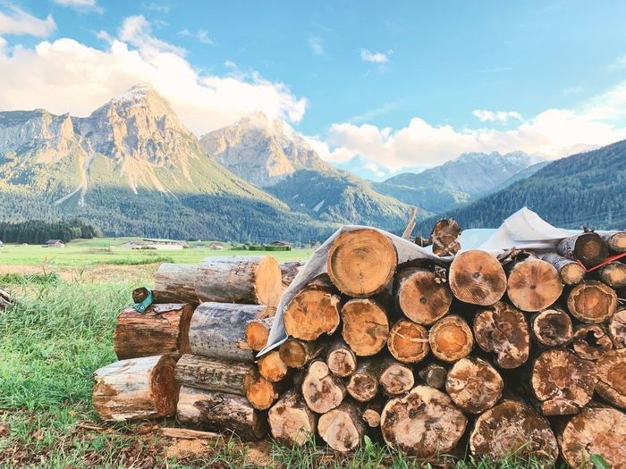 Stack of logs against mointain range and sky