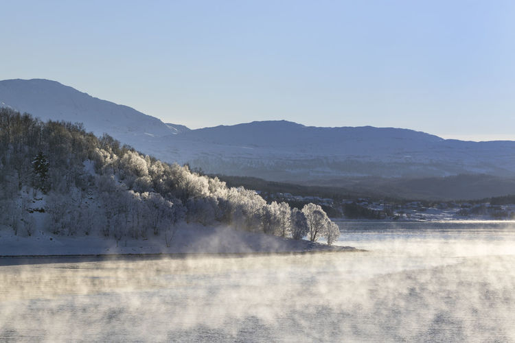 Steam over fjord in the early morning with temperatures around -15°C Beauty In Nature Mountain Scenics - Nature Water Tranquil Scene Clear Sky Copy Space Environment Idyllic Non-urban Scene Winter Arctic Cold Temperature Morning Light - Natural Phenomenon Steam Waterfront Fjord Sea Forest Snow Island Tree Frozen Mountain Range